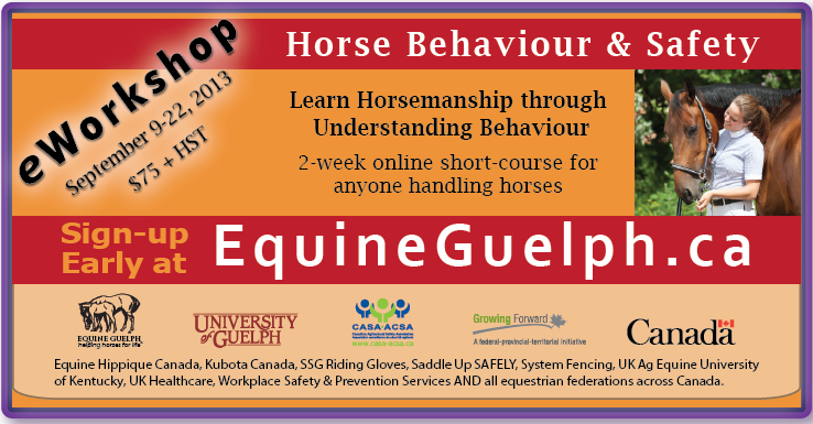 Get the details about the Equine Guelph Behaviour & Safety eworkshop