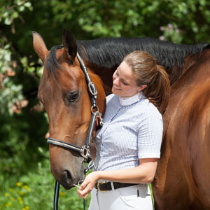 Learning Safe Horsemanship Through Understanding Behaviour