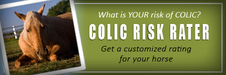 (button) Colic Risk Rater