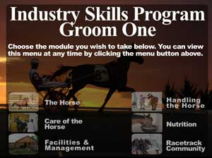 (button) Open Groom One program sample (Flash)