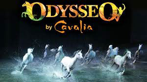 The Odysseo horses