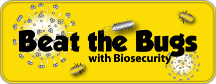Beat-the-Bugs-Logo
