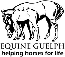 Equine Guelph logo image