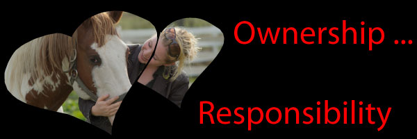 Ownership ... Responsibility