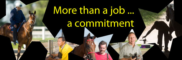 More than a job...a commitment