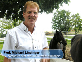 Prof. Michael Lindinger compares heat stress in humans and horses