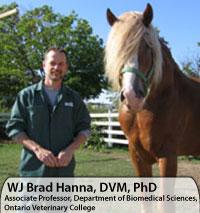 WJ Brad Hanna, DVM, PhD