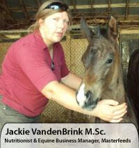 Jackie VandenBrink M.Sc., Nutritionist & Equine Business Manager, Masterfeeds
