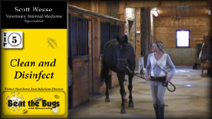 BIOSECURITY TIPS FOR HORSE FARMS video image