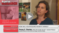 Dr. Tracey Chenier Report on Research Video