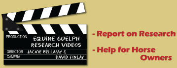 Equine Guelph Research videos image