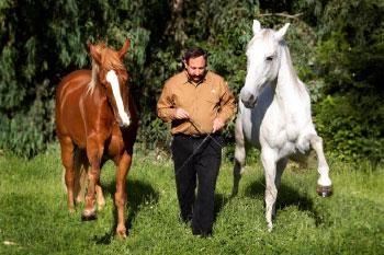 Master Horse Trainer David Lichman