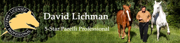 Image of Master Horse Trainer David Lichman