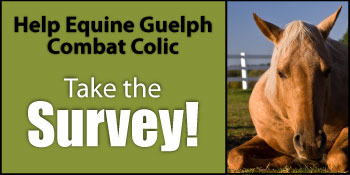 Help Us combat Colic - take the Survey