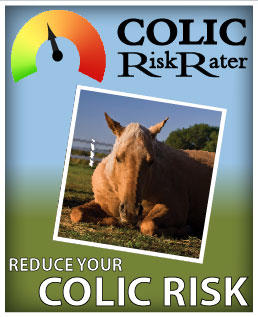 (button) Go to Colic Risk Rater (webpage)