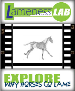 (button) Lameness Lab