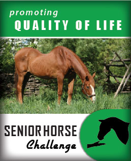 (button) Go to Senior Horse Challenge Tool(webpage)