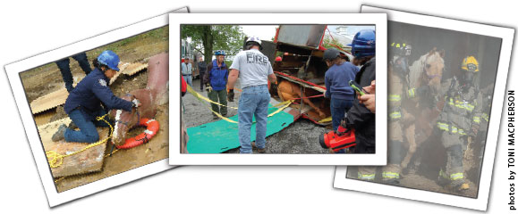 Large Animal Rescue Operational Level Course collage